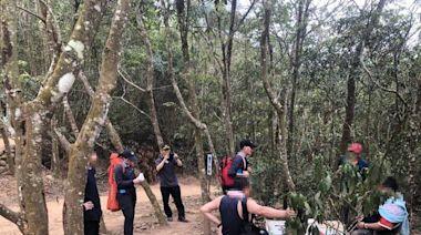 130公斤「高粱哥哥」登火炎山開喝醉倒 警消11人救援