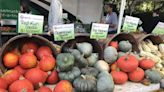 The Best Farmers Market in Every State — Eat This Not That