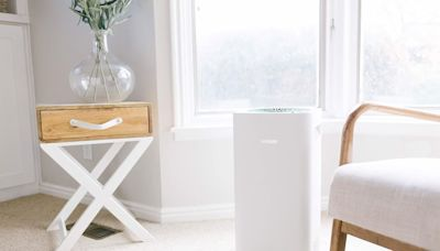 Got Seasonal Allergies? These Air Purifiers Will Help Your Home Stay Allergen-Free