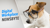 Digital Workplace Newsbyte: Facebook Brings Metaverse to Europe with 10,000 Hires, IBM Rebrands & More News