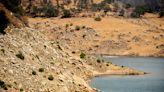 美西乾旱衝擊水力發電 今夏恐有停電危機