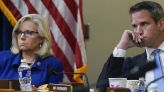 The key problem with the GOP trying to cancel Cheney, Kinzinger