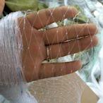 防鳥網 果樹防護網果園櫻桃遮鳥網家用防護罩農用