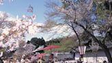 京都(下):融傳統與創新為一體的國際旅遊城市