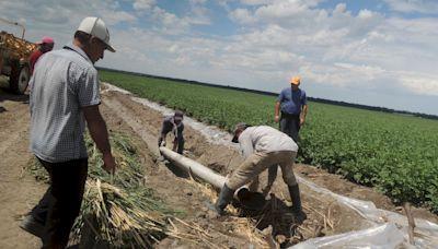 誰該為糧荒負責?─從聯合國糧食系統峰會遭杯葛談起
