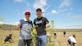 愛種樹與MaiCoin聯合推出環保NFT,宣告認養樹林的科技新方式!
