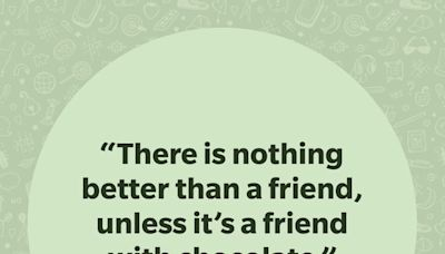 35 Funny Friendship Quotes to Share with Your Friends