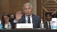 'You do not know what you are talking about' -Fauci to Paul