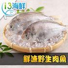 【愛上海鮮】鮮凍野生肉魚8包組(180g±10%/包/兩尾一包)