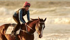 Ride Like a Girl review – Michelle Payne biopic is a feelgood victory lap