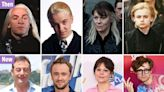 Harry Potter Malfoy cast then and now - from tragic deaths to drug addictions