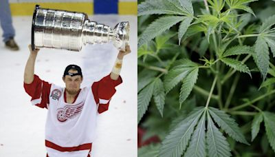Marijuana helped former NHL champion Darren McCarty beat alcoholism, he says. 'I would've been dead without it.'