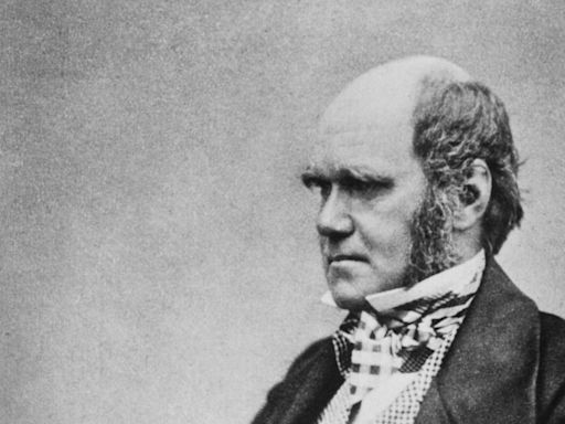 Charles Darwin notebooks 'stolen' from Cambridge library