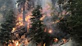 Caldor Fire: Containment grows to 71% on massive wildfire