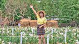 2021大古山野百合花季盛大開幕 五一連假賞花逛市集