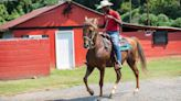 Teen trades jail for horse ranch in Charlotte program that rethinks justice