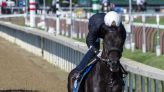 Maxfield makes his case at Saratoga for best older horse