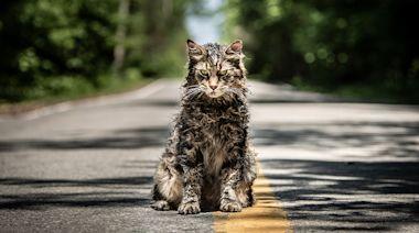 'Paranormal Activity' Sequel, 'Pet Sematary' Prequel Debuting on Paramount Plus