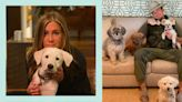 Just 24 celebrities with their cute dogs