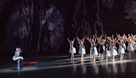 How Tschaikovsky's Swan Lake Changed Ballet Forever   Playbill