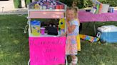 Maryville 6-year-old raises more than $1,500 for St. Jude Children's Hospital