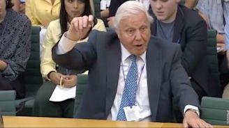 Nada Farhoud: Poison-blighted beaches show we must listen to David Attenborough