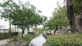 【小鎮3.0】高雄鳳山-乘風騎遊歷史古城 嘗遍道地傳統小吃 | 蕃新聞