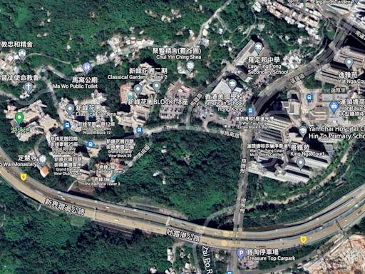大埔桃源洞「綠化地」改劃建2400公屋單位 移除近千棵樹