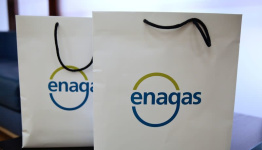 Enagas's 9-Month net profit falls 12%, Full year outlook unchanged