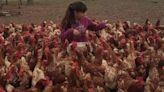 La increíble historia de Abril: empezó a criar 10 gallinas en pandemia, ahora tiene 800 y vende huevos a todo su pueblo