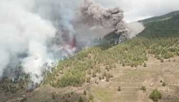 Lava Flow Burns Trees, Engulfs Structures in Canary Islands