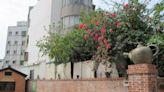 部分歷史建築用地遭公告廢止 竹南蛇窯提訴願