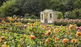 10 images of Buckingham Palace's gardens that prove just how immaculate they are
