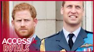 Prince Harry, Prince William & Rest Of Royal Family Will Not Wear Military Uniforms at Prince Philip's Funeral