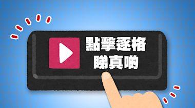 養貓養到禿頭!深圳女孩感染真菌猛掉頭髮 - 香港經濟日報 - 中國頻道 - 社會熱點