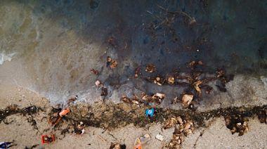 【中油大林廠漏油事件】兩週後警報解除 海污防治有得失 生態復原更大考驗
