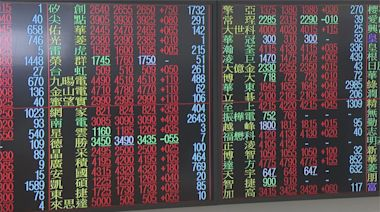 金融.傳產助攻台股重回萬七 專家:持股平均配置