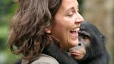 """""""Lo que estoy observando con humanos en confinamiento no es muy distinto a los loros enjaulados a los que vi sacarse las plumas"""": entrevista con la científica chilena Isabel Behncke"""