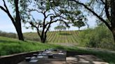 30+ Summer wine tasting experiences to enjoy in Sonoma, Napa, Livermore and more