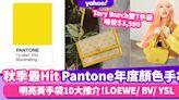 Pantone 2021秋季年度顏色手袋十大推介!明亮黃名牌手袋 LOEWE Goya連泫雅都入手