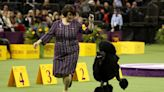 Siba the Standard Poodle wins the Westminster Kennel Club Dog Show