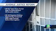 Ban on chokeholds among California criminal justice reforms
