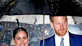 Prince Harry's career: military service, Netflix deal and net worth