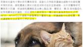 【錯誤】網傳「研究證實:寵物體味可防癌」?