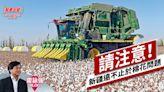 請注意!新疆遠不止於棉花問題