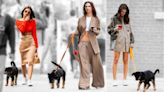 How Colombo, Emily Ratajkowski's Puppy, Became New York's Cutest New Celebrity