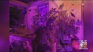 Spectacularly Spooky Halloween House
