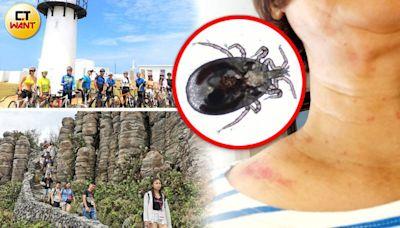 換季怪病1/半夜冷氣孔爬出「蟲蟲大軍」 一覺醒來冒出上百顆紅疹