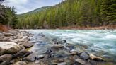 Development In A Wealthy Montana Boom Town Is Fouling A World-Class Trout River