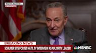 Schumer open to criminal charges for Trump, acolytes in Capitol riot